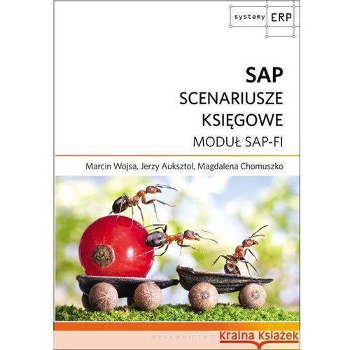 SAP SCNEARIUSZE KSIĘGOWE MODUŁ SAP-FI [opr. kartonowa]